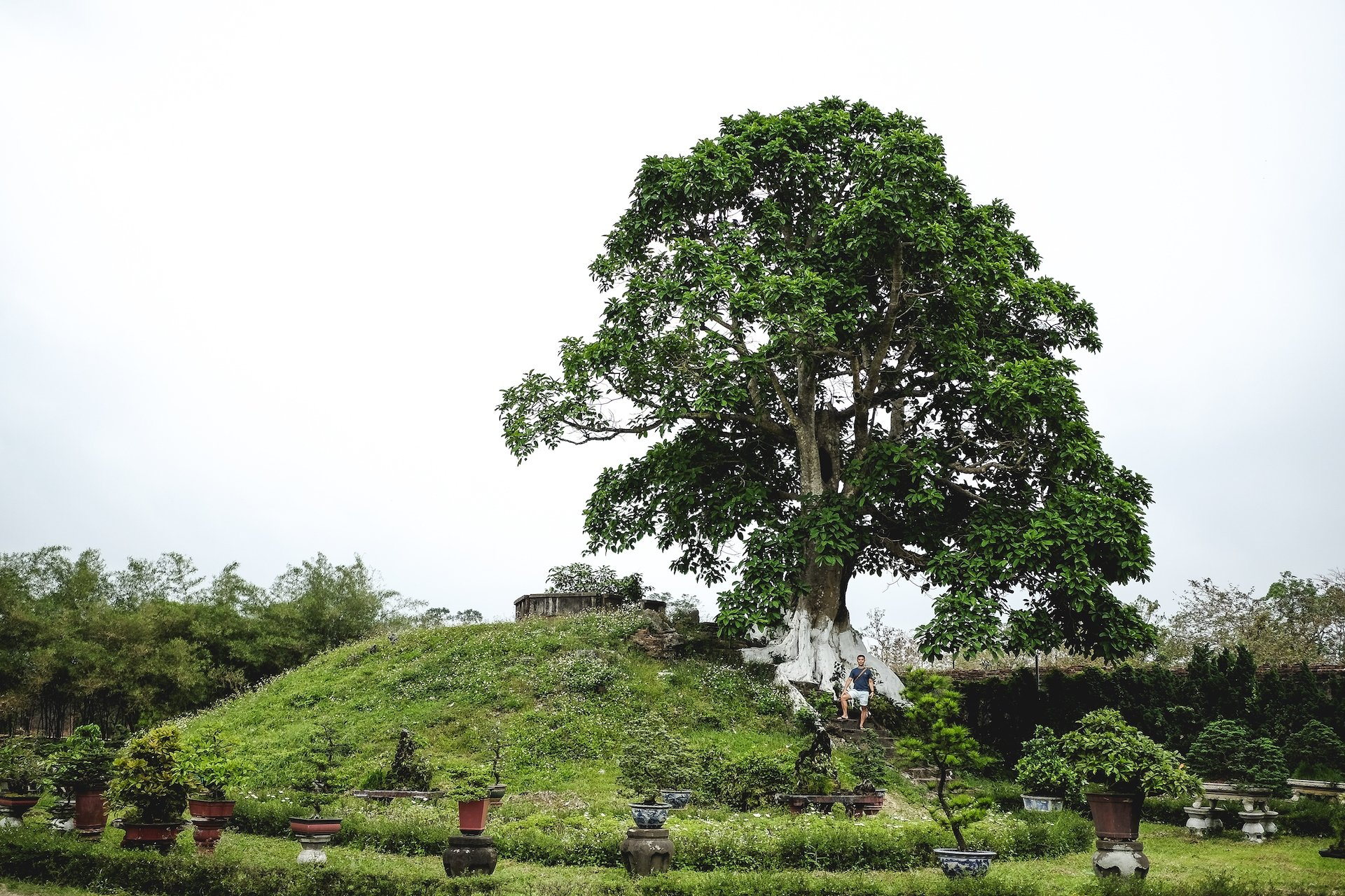 Imperial City garden